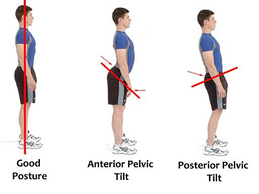 postures.jpg